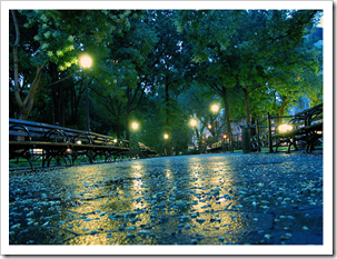باران پرویز (1)