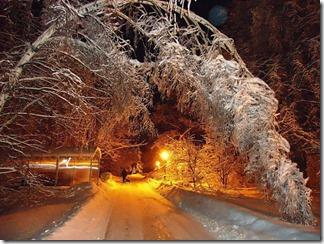 برف (14)